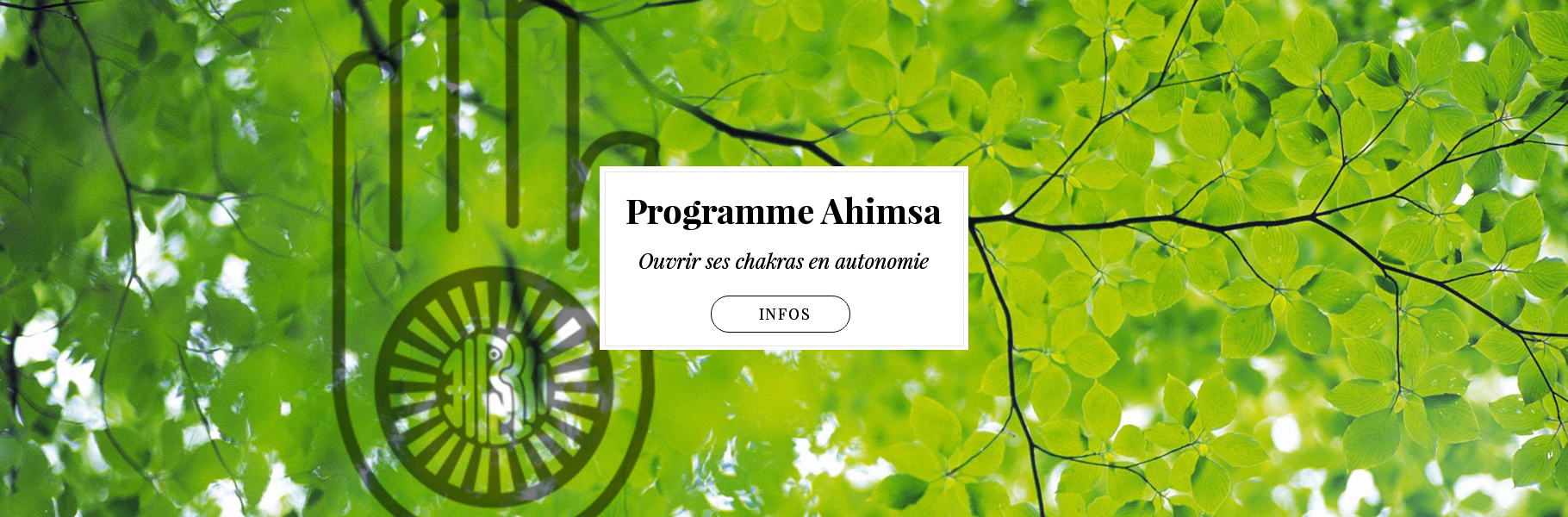 programme-ahimsa-chakras-developpementpersonnel