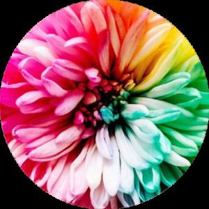 test-couleurs